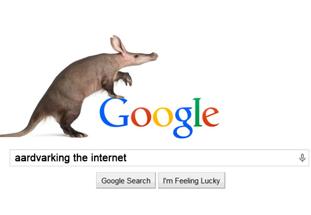Aardvarking Google: How to improve your search ranking
